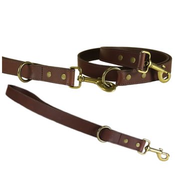 -pet-cat-leatherleads.jpg