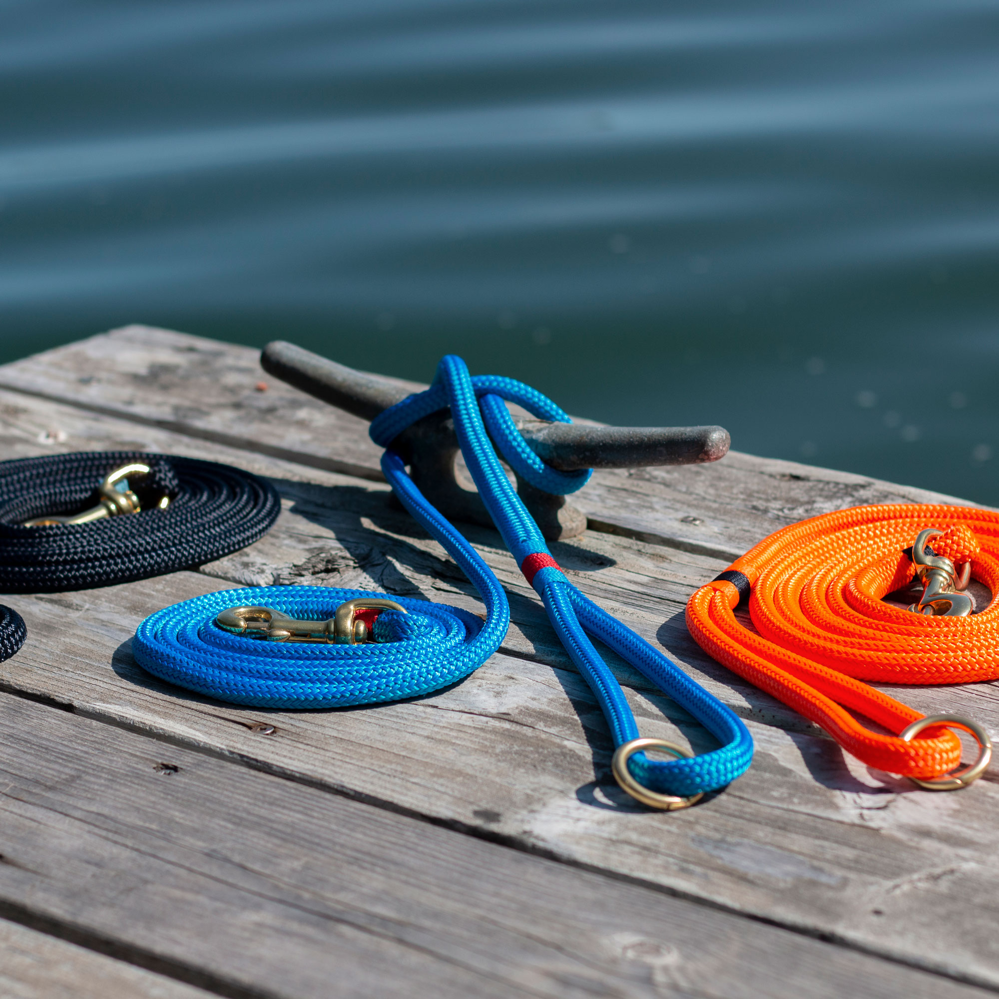 Rope Leads on Dock